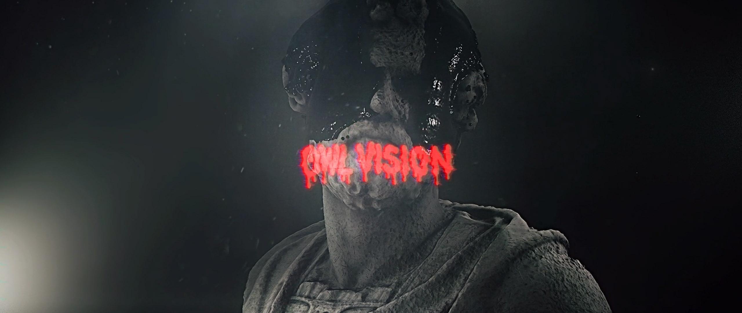 OwlVision_3