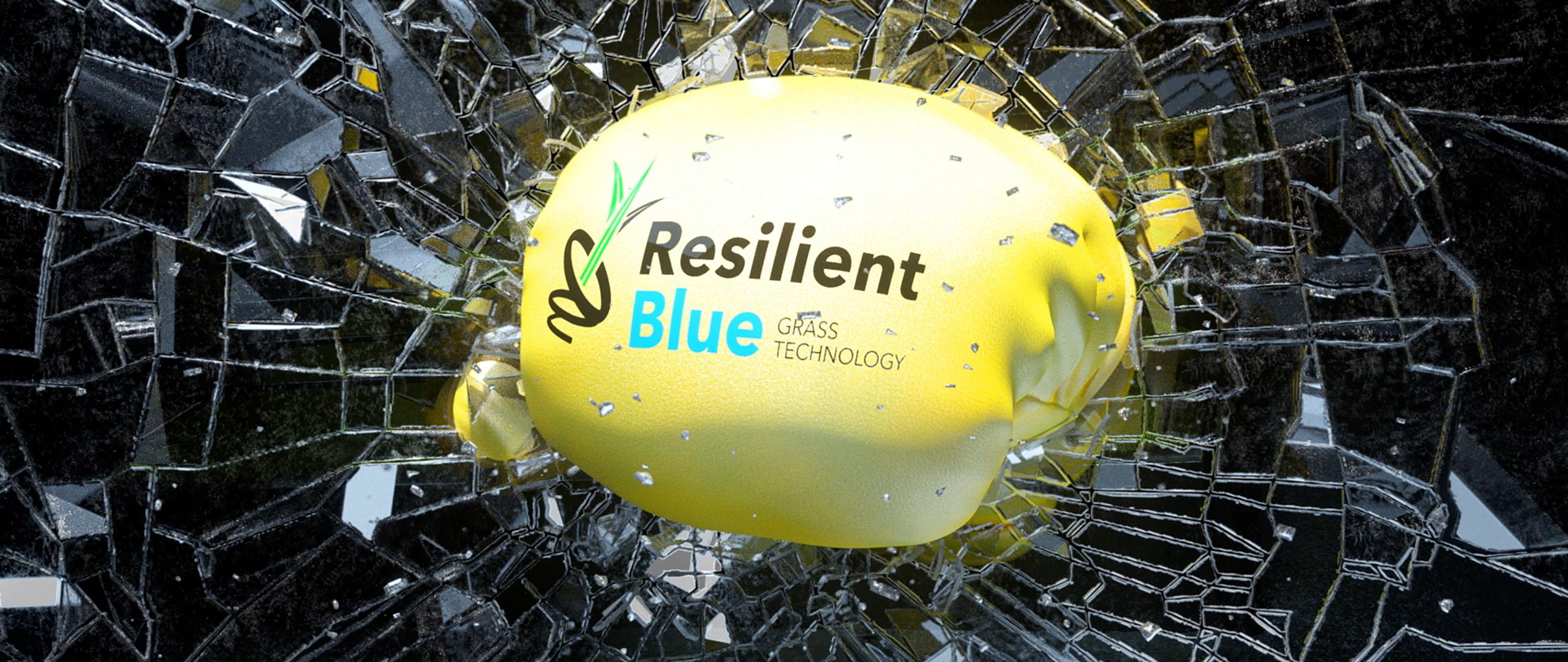 Barenbrug_ResilientBlue_Still_4